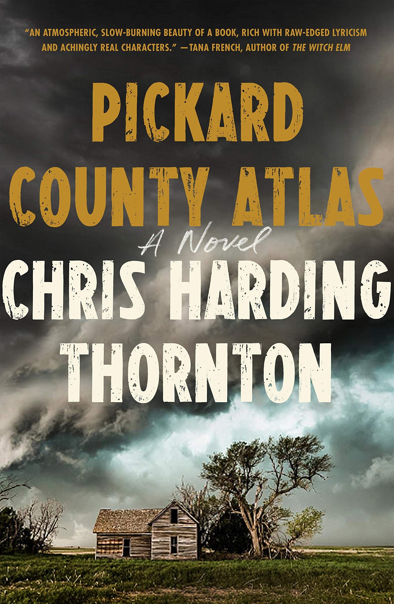 Book Cover: Pickard County Atlas: A Novel