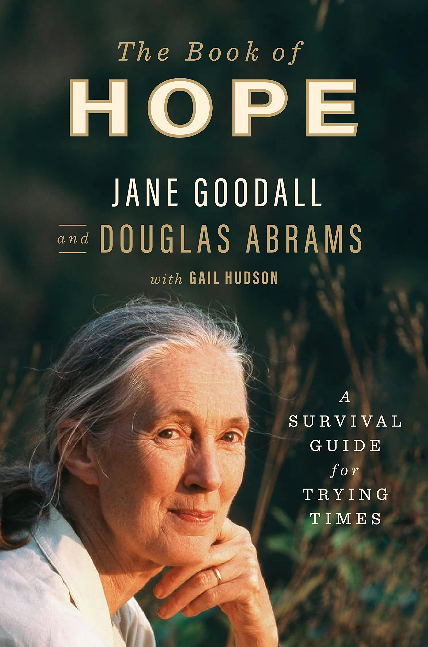 Book Cover: The Book of Hope: A Survival Guide for Trying Times