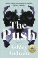 Book Cover: The Push: A Novel